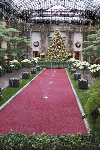 The cranberry pool in the main conservatory.