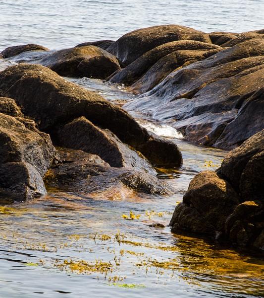 Wavelets coming ashore.